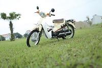 Xe Máy Cub Victoria 50cc dòng xe dành cho học sinh