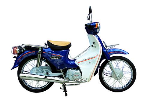 Xe Cub 50 JAPAN kiểu 81 LÙN BÁNH BÉO MÀU XANH CỬU LONG