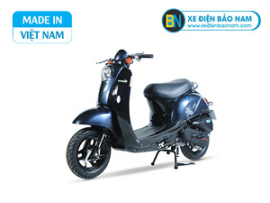 Xe ga 50cc Scoopy màu xanh tím than