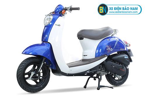 Xe ga 50cc Scoopy màu xanh tím
