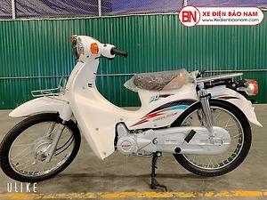 Xe Cub Dealim RC 50cc màu trắng