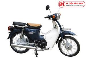 Xe Cub New 50cc Việt Thái Màu Đen