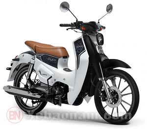 Xe máy CUB 50 SYM Lwen màu trắng